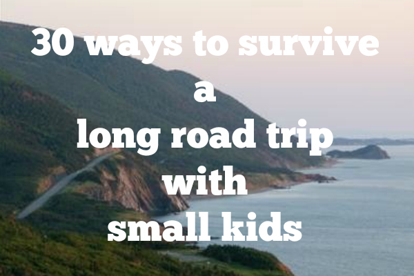 30 ways to survive a long road trip with small kids