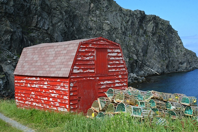 Newfoundland in the Summer