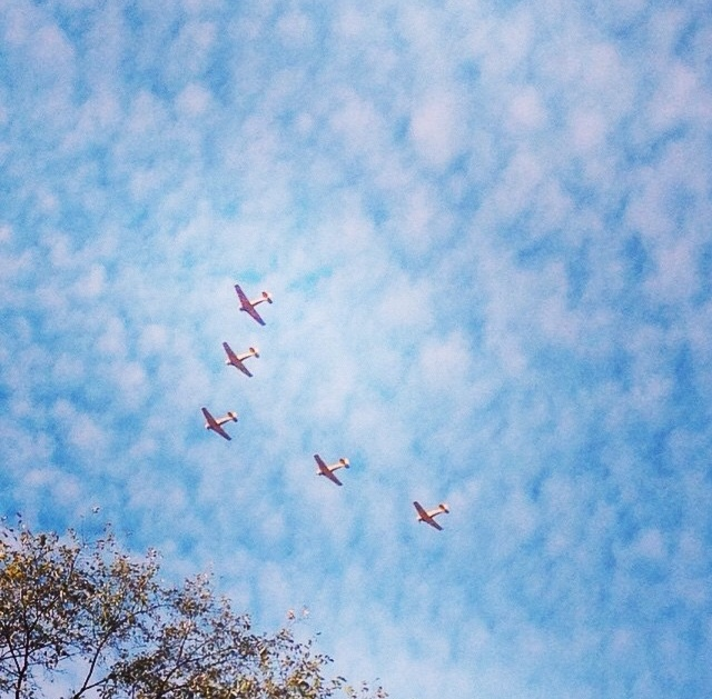 Watching these WW2 trainer planes fly past on Remembrance Day.