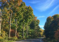 change-is-in-this-autumn-air-read-more-at-idontblog-ca